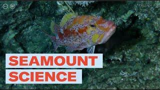 Seamount science
