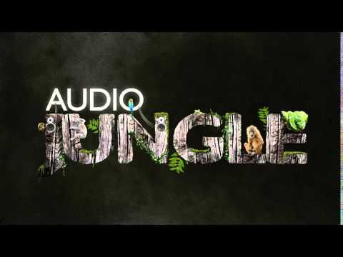 Audiojungle Driving Indie Anthem 8677237 - Free download