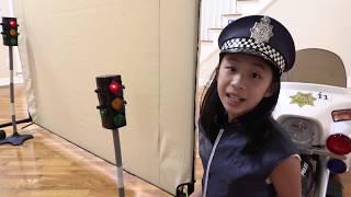 Pretend Play Police No Parking Handicap Missing Car
