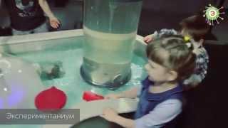видео Музей занимательных наук «Экспериментаниум»