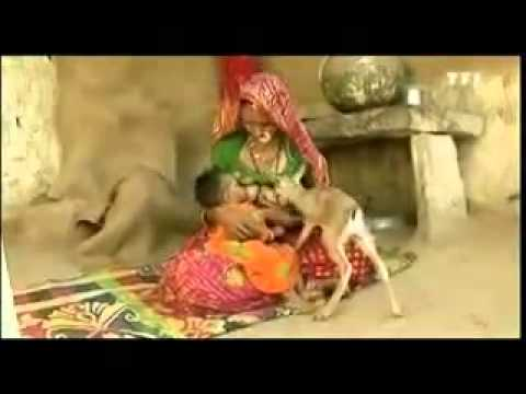 Jodhpur Marwadi Bisnoi Rajasthani Videos 2013