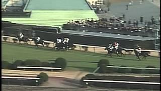 中山大障害・秋 1991年 シンボリモントルー