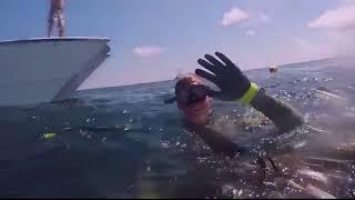 Подводная охота на тунца и осьминога