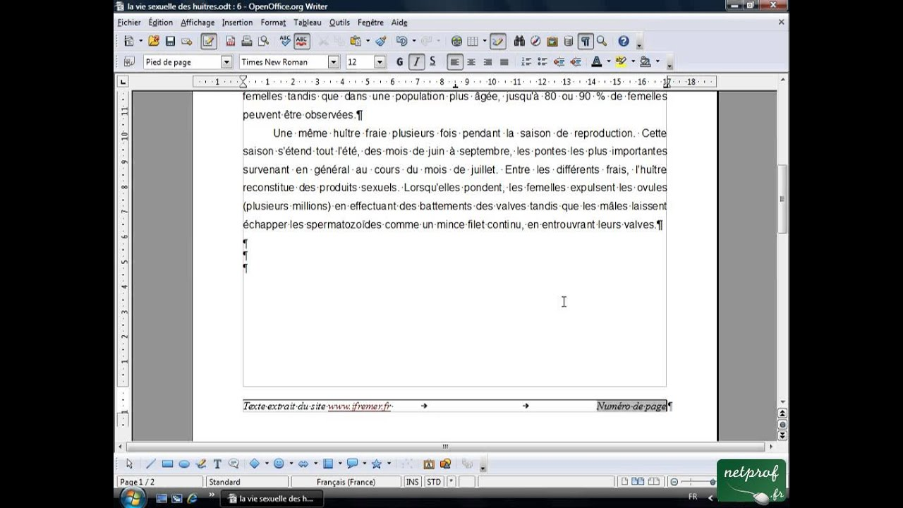 Open office ou libre office texte long 9 numerotation des pages youtube - Comment faire un diaporama sur open office ...