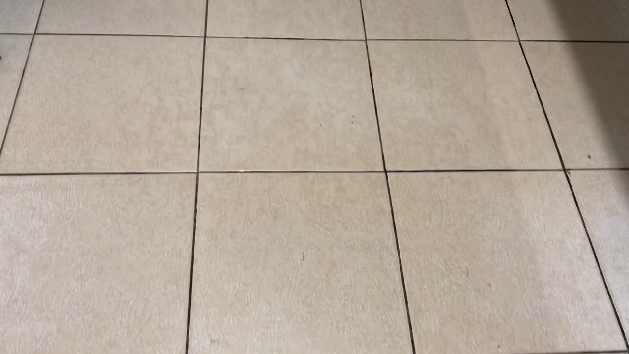 Demonstração de limpeza de cerâmica com Remofluor WhatsApp 62 981317144