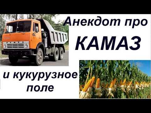 улыбнуло))анекдот про камаз и кукурузное поле)).mp4