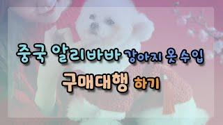 중국 알리바바 구매대행 강아지옷