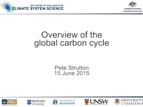 Overview of the global carbon cycle, including anthropogenic perturbation (Pete Strutton)