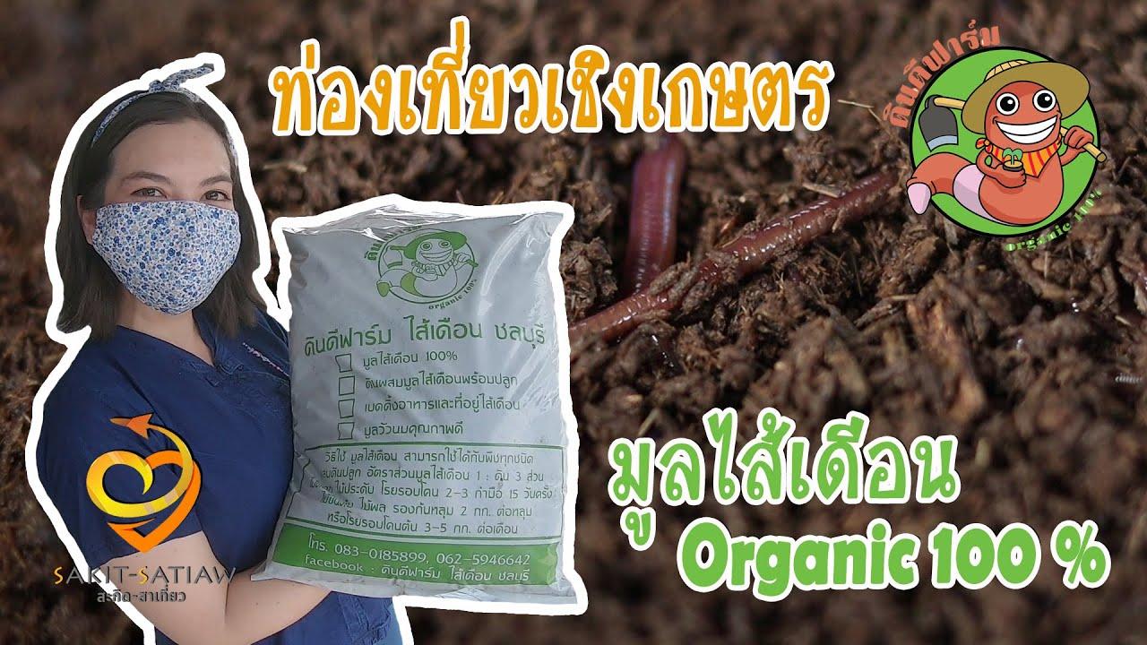 การเลี้ยงไส้เดือน -อาชีพช่วงโควิด - ดินดีฟาร์ม - ชลบุรี  สะกิดสาเที่ยว : EP12 ท่องเที่ยวเชิงเกษตร