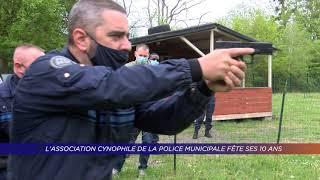 Yvelines | L'association cynophile de la police municipale fête ses 10 ans
