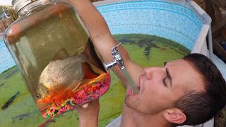 Drinking Nasty FISH WATER Out Of DRINKING