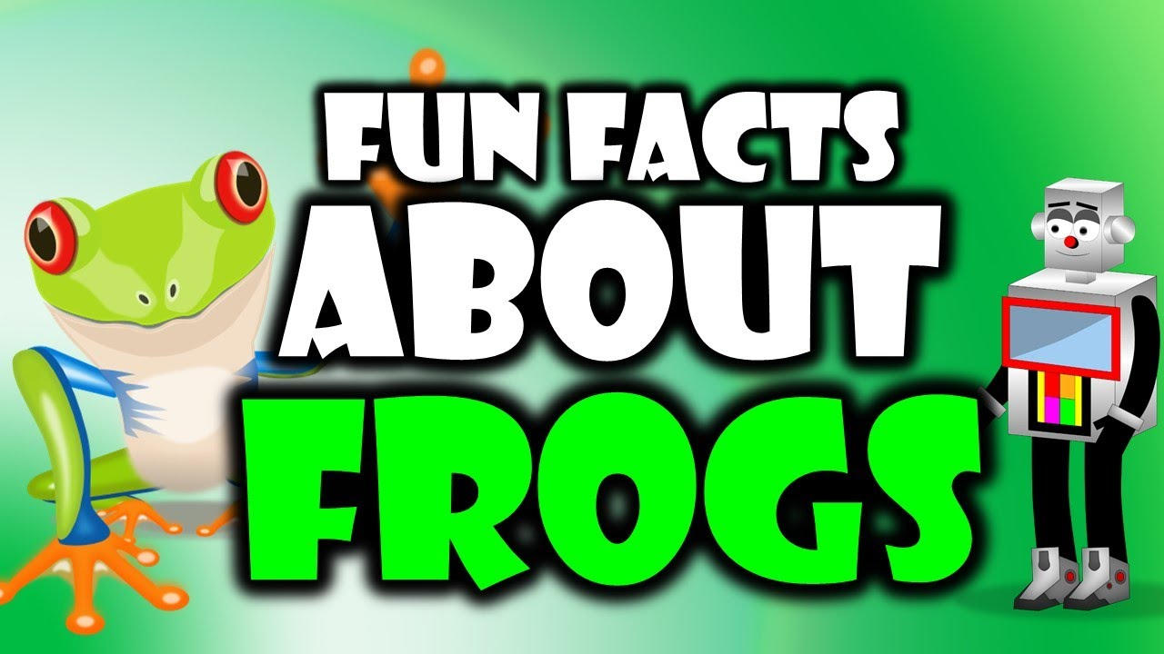 Frogs are Amazing! Learn here with our Top 5 Facts about ...