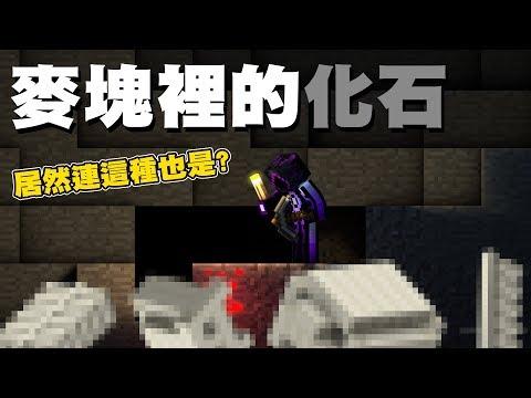 Minecraft 化石一口氣看完!!!! 居然有獨眼化石!!?