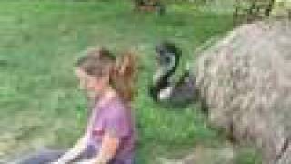 Emu Hairdresser on Fire