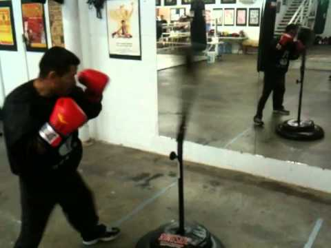 2017 01 14 Abf Gym 7 30pm Pro Boxer Danny Alvarez Hitting The Cobra Reflex Bag You
