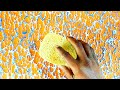 Wall putty texture 2 shade painting design Orange blue and white.HD