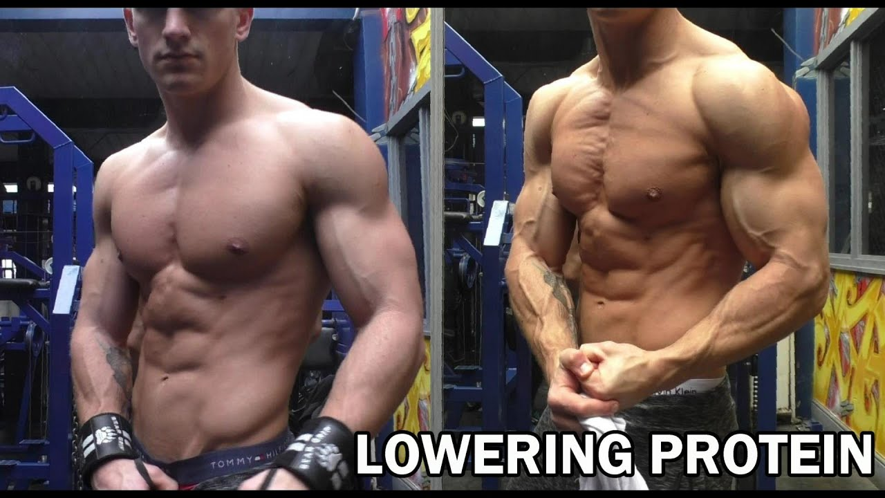 A Brief Guide to Low Protein Bodybuilding