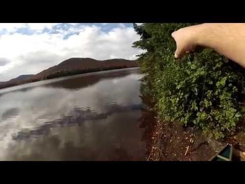 Cedar River Flow Part 1