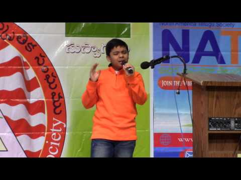 Naalo Nenena By Tarun Donipati - Padutha Theeyaga 2015 USA Auditions