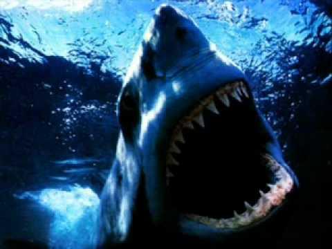 TF1- le générique du JT inspiré des dents de la mer !