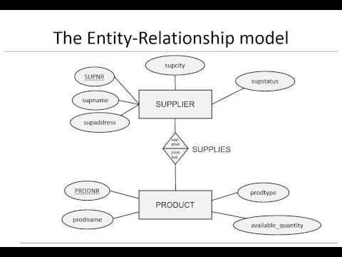 Chapter 3:  Data models  - ER model