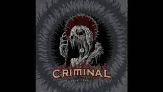 Criminal - False Flag Attack (New Song 2016)