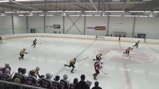 C-nuorten Mestis Kiekko-Laser/KKP vs. RoKi 23.3.2019