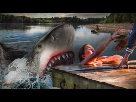 Ozark Sharks: Body Count