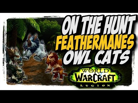 Feathermanes Owlcats!! Common to Rare hunter pets