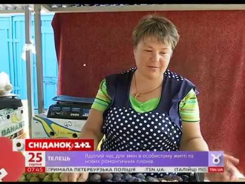 Які сорти слив українці найбільше купують на ринках