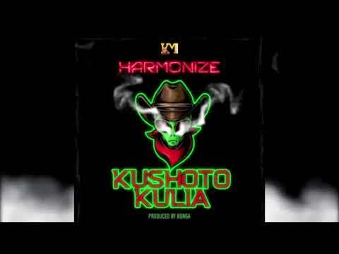 harmonize---kushoto-kulia-instrumental-beat