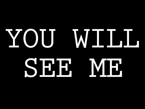 YOU WILL SEE ME - dan le sac vs Scroobius Pip