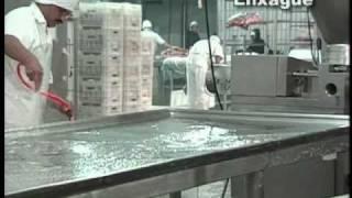 Procedimentos Padrao de Higiene Operacional - SSOP