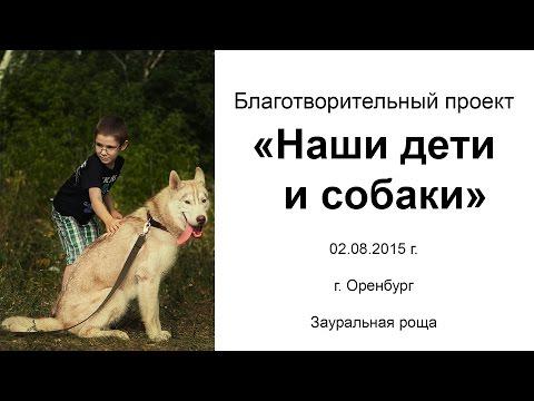 """Благотворительный проект """"Наши дети и собаки"""", Оренбург"""