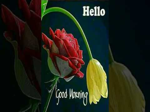 Good Morning To All Guys Have A Nice Day Youtube