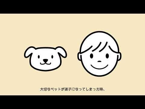 ずっといっしょムービー/フルバージョン