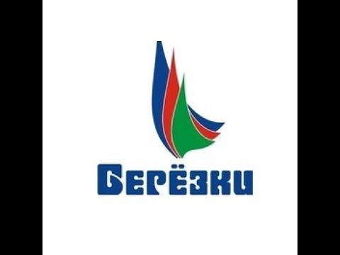 ДОЛ Березки г Новокуйбышевск Самарская область