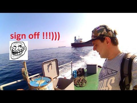 Работа, резюме и вакансии для моряков. Крюинги Украины