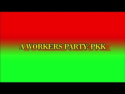 A Workers Party: PKK (PKK in reality)