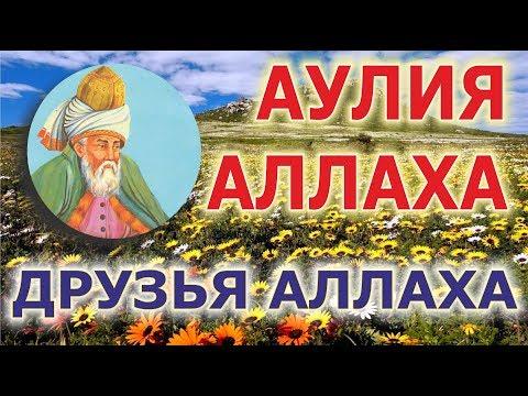 28 Достоинства аулия - друзей Аллаха. Кладезь познаний. Илдус Хазрат Фаиз.