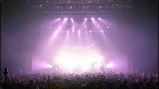 ビッケブランカ / ウララ from WIZARD TOUR 2019 FINAL at Zepp Tokyo