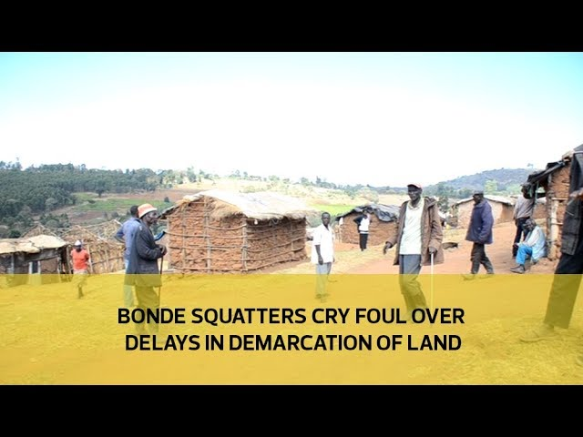 Bonde squatters cry foul over delays in demarcation of land