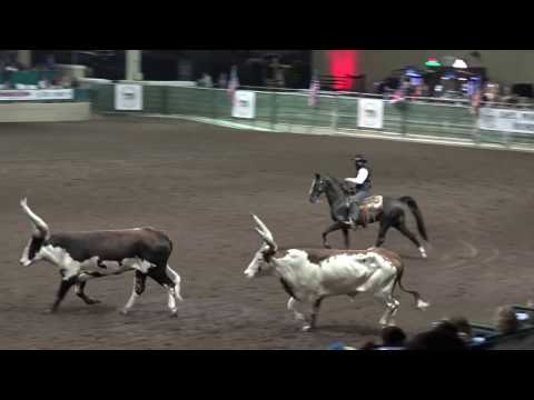 John Payne  The One Arm Bandit  Night of the Horse 2017  Del Mar National Horse