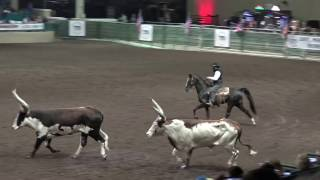 John Payne The One Arm Bandit Night Of The Horse 2017 Del Mar National Horse Show