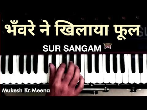 Bhanwre Ne Khilaya Phool Pool Ko Le Gay Rajkunwar - Prem Rog | Sur Sangam | Harmonium | How To Play
