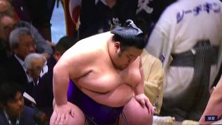 Reminder that all the matches can be viewed in HD** Yokozuna Kiseno...