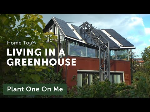 What's it Like to Live in a Greenhouse? Houseplant Home Tour — Ep 163