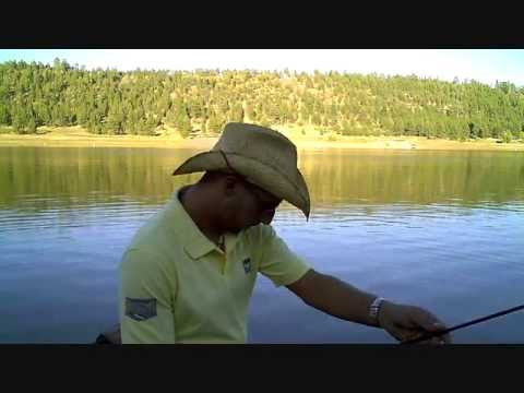 Flyfishing report for pike flagstaff az 10 29 2011 fishing for Fishing report az