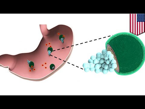 Stomach infection: Drug-bearing micromotors could provide one-step treatment - TomoNews