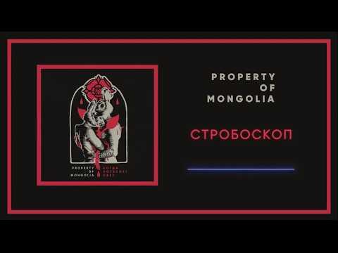 Property Of Mongolia - Стробоскоп